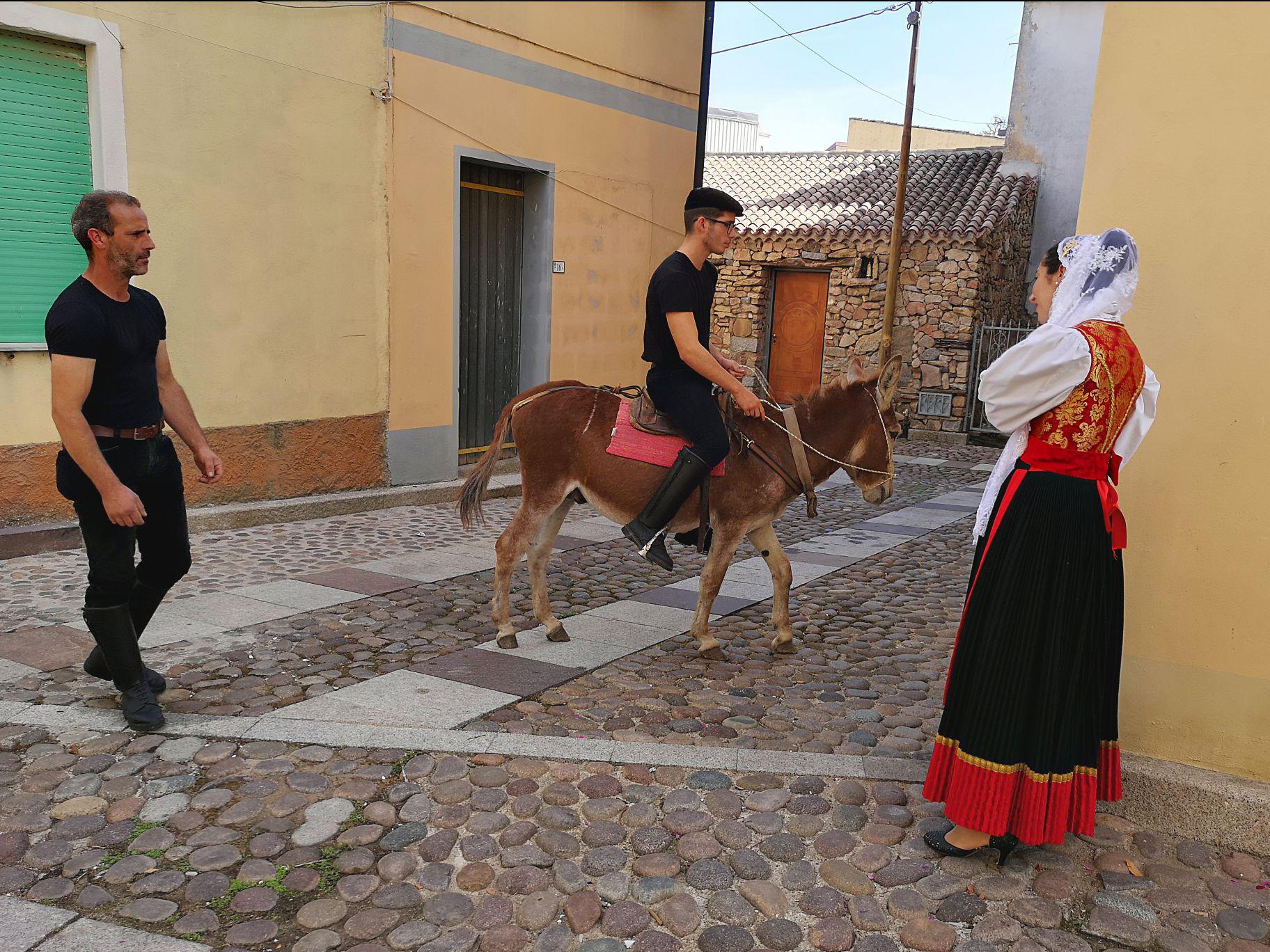 Cortes Apertas 2019